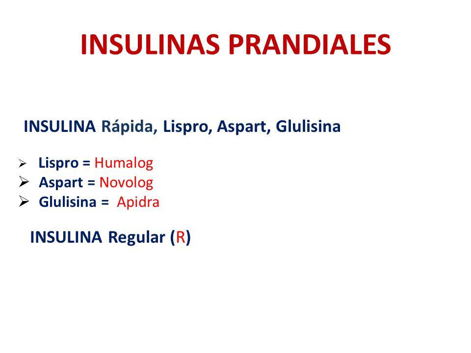 INSULINAS PRANDIALES INSULINA Rápida, Lispro, Aspart, Glulisina Lispro = Humalog Aspart = Novolog Glulisina = Apidra INSULINA Regular (R)