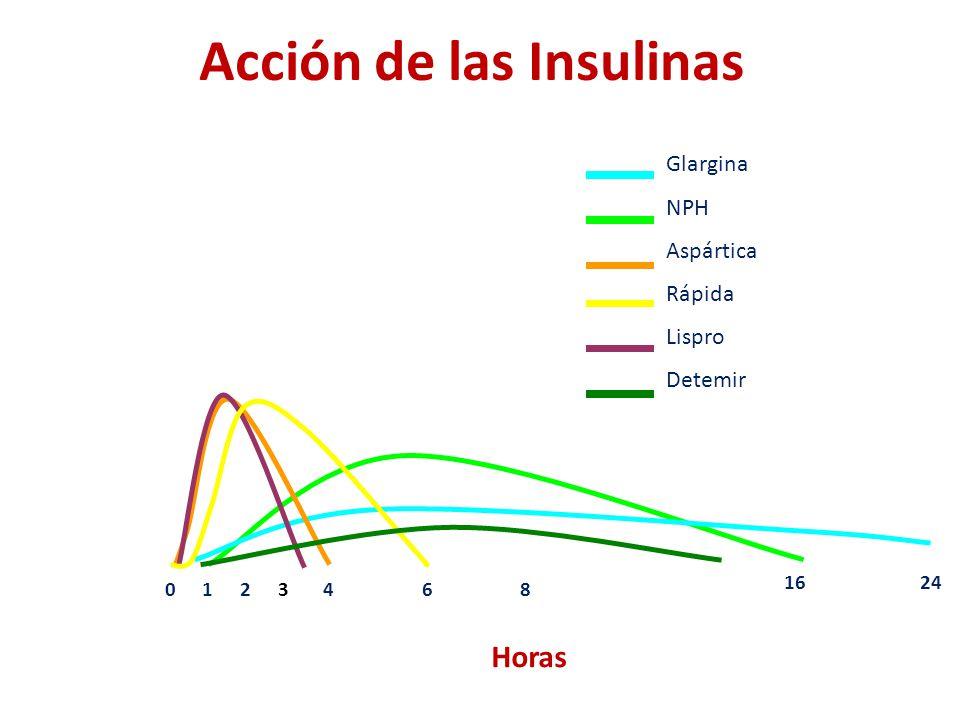 Acción de las Insulinas 0124 2416 68 Horas Glargina NPH Aspártica Rápida Lispro Detemir 3