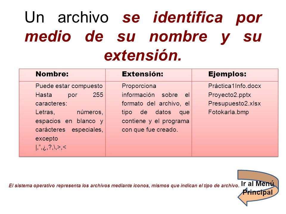 Un archivo se identifica por medio de su nombre y su extensión. El sistema operativo representa los archivos mediante iconos, mismos que indican el ti