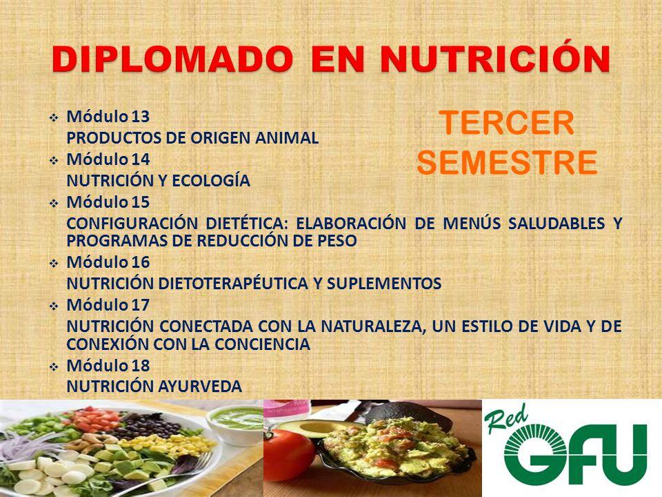 Módulo 13 PRODUCTOS DE ORIGEN ANIMAL Módulo 14 NUTRICIÓN Y ECOLOGÍA Módulo 15 CONFIGURACIÓN DIETÉTICA: ELABORACIÓN DE MENÚS SALUDABLES Y PROGRAMAS DE REDUCCIÓN DE PESO Módulo 16 NUTRICIÓN DIETOTERAPÉUTICA Y SUPLEMENTOS Módulo 17 NUTRICIÓN CONECTADA CON LA NATURALEZA, UN ESTILO DE VIDA Y DE CONEXIÓN CON LA CONCIENCIA Módulo 18 NUTRICIÓN AYURVEDA TERCER SEMESTRE