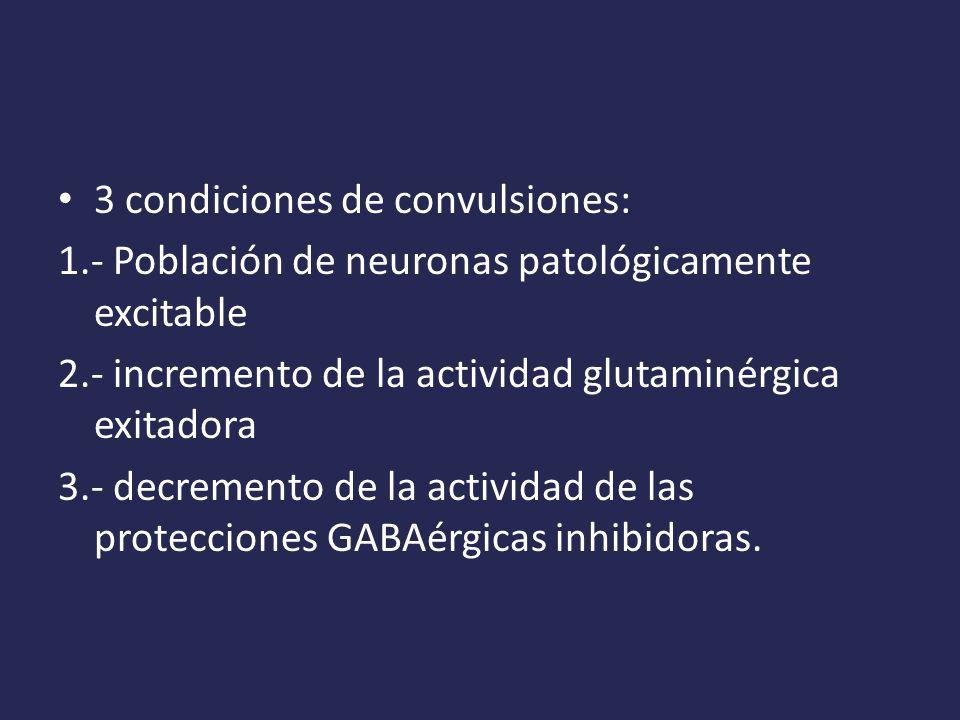 3 condiciones de convulsiones: 1.- Población de neuronas patológicamente excitable 2.- incremento de la actividad glutaminérgica exitadora 3.- decremento de la actividad de las protecciones GABAérgicas inhibidoras.
