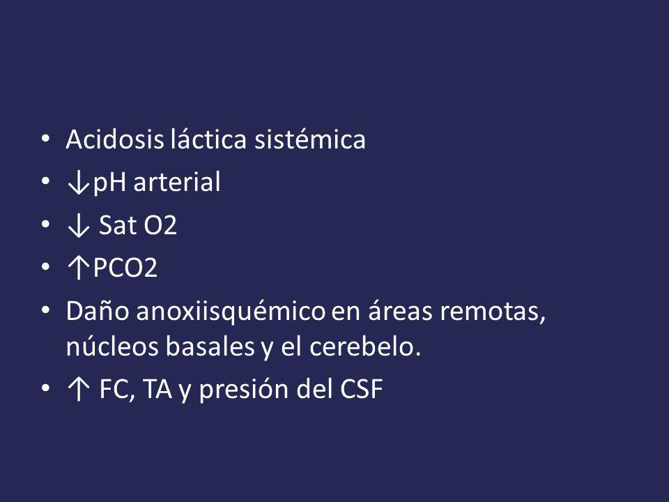 Acidosis láctica sistémica pH arterial Sat O2 PCO2 Daño anoxiisquémico en áreas remotas, núcleos basales y el cerebelo.