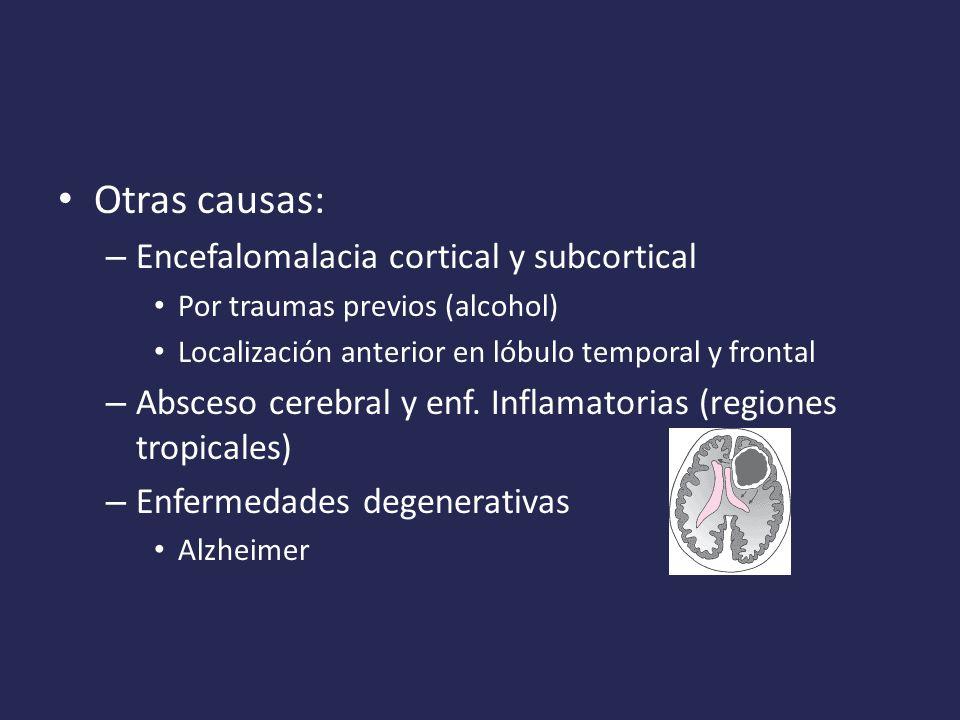 Otras causas: – Encefalomalacia cortical y subcortical Por traumas previos (alcohol) Localización anterior en lóbulo temporal y frontal – Absceso cerebral y enf.