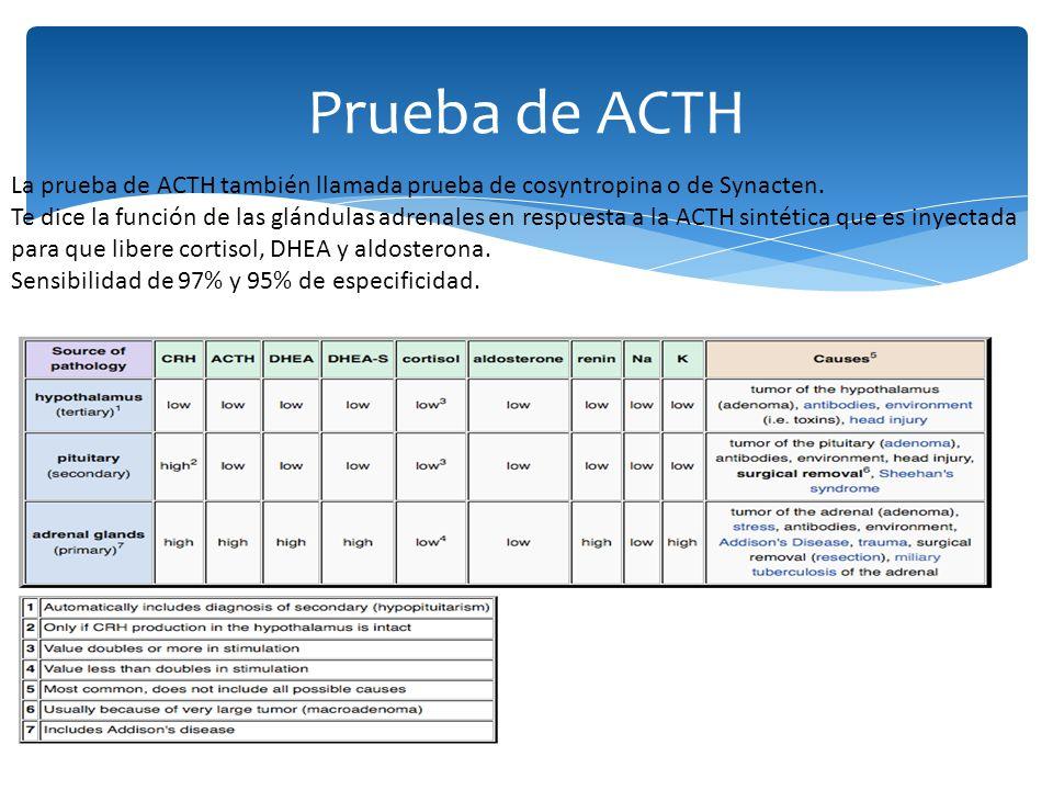 La prueba de ACTH también llamada prueba de cosyntropina o de Synacten. Te dice la función de las glándulas adrenales en respuesta a la ACTH sintética