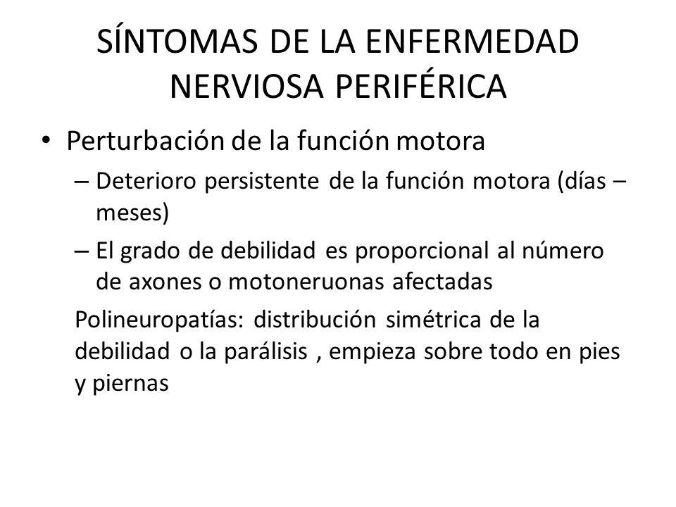 SÍNTOMAS DE LA ENFERMEDAD NERVIOSA PERIFÉRICA Perturbación de la función motora – Deterioro persistente de la función motora (días – meses) – El grado
