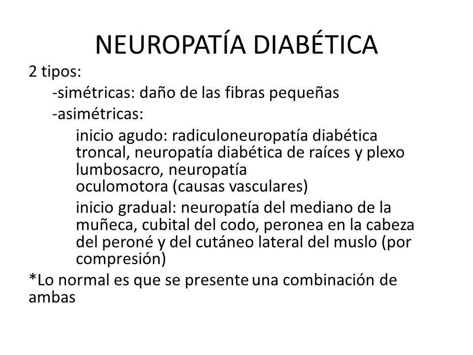 NEUROPATÍA DIABÉTICA 2 tipos: -simétricas: daño de las fibras pequeñas -asimétricas: inicio agudo: radiculoneuropatía diabética troncal, neuropatía di