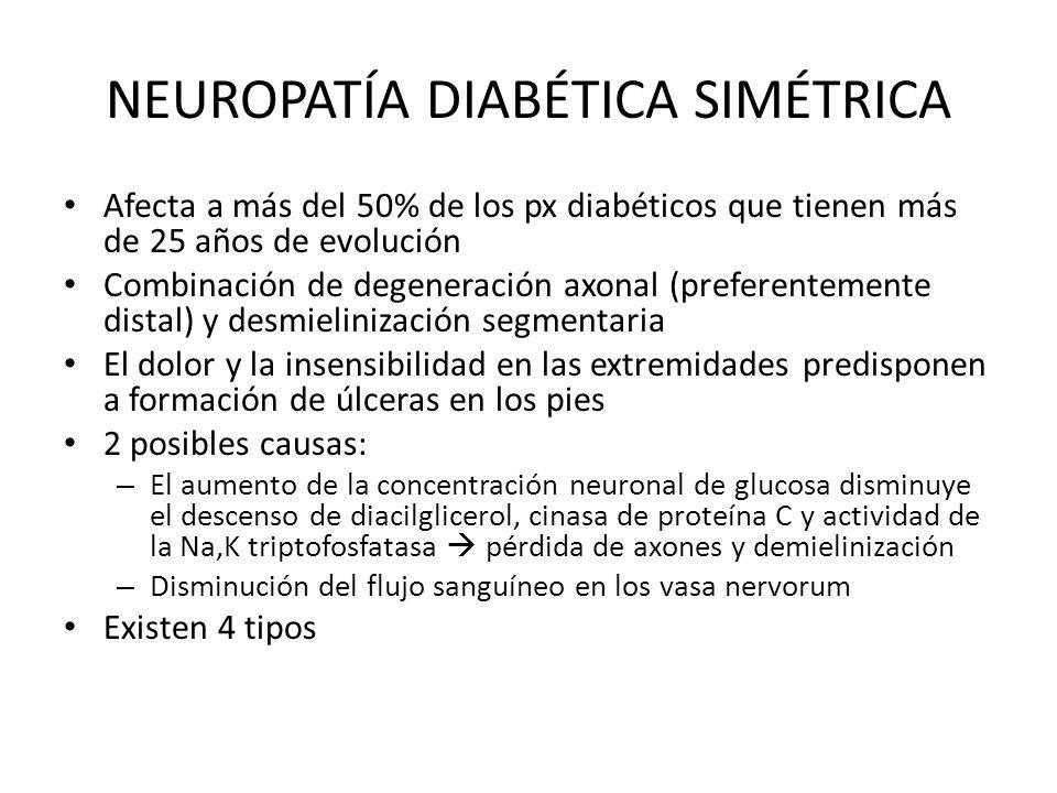 NEUROPATÍA DIABÉTICA SIMÉTRICA Afecta a más del 50% de los px diabéticos que tienen más de 25 años de evolución Combinación de degeneración axonal (pr