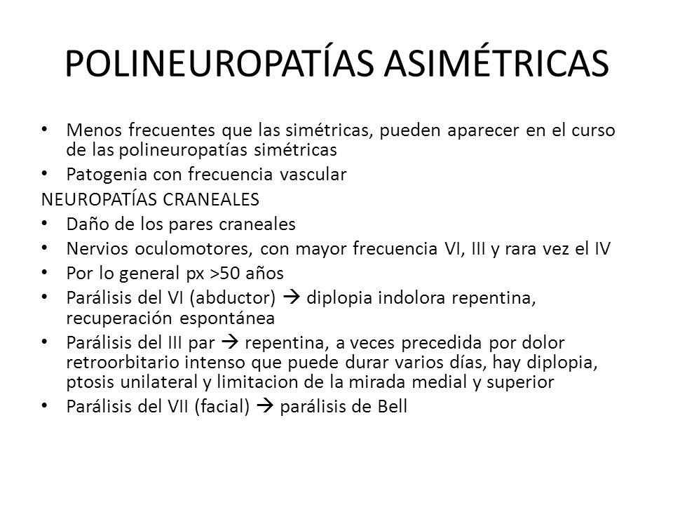 POLINEUROPATÍAS ASIMÉTRICAS Menos frecuentes que las simétricas, pueden aparecer en el curso de las polineuropatías simétricas Patogenia con frecuenci
