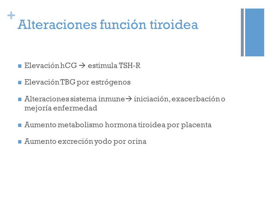 + Alteraciones función tiroidea Elevación hCG estimula TSH-R Elevación TBG por estrógenos Alteraciones sistema inmune iniciación, exacerbación o mejoría enfermedad Aumento metabolismo hormona tiroidea por placenta Aumento excreción yodo por orina