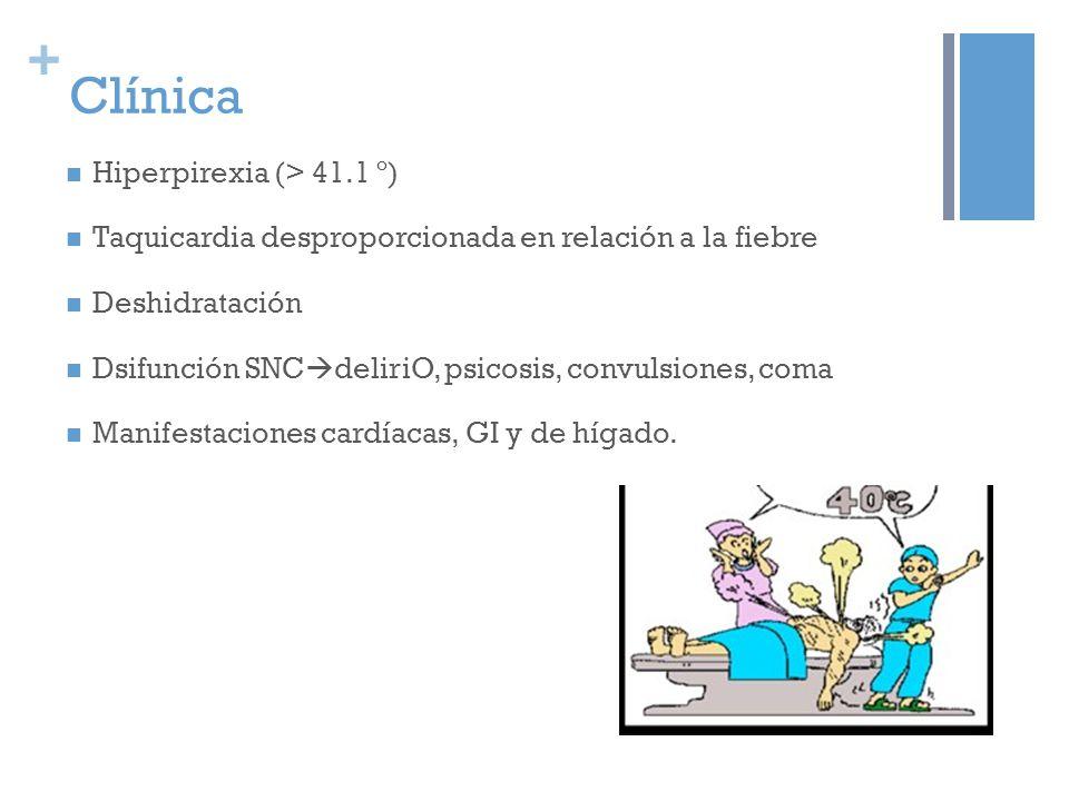+ Clínica Hiperpirexia (> 41.1 º) Taquicardia desproporcionada en relación a la fiebre Deshidratación Dsifunción SNC deliriO, psicosis, convulsiones, coma Manifestaciones cardíacas, GI y de hígado.