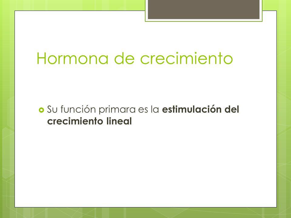 Hormona de crecimiento Su función primara es la estimulación del crecimiento lineal