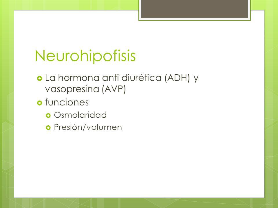 Neurohipofisis La hormona anti diurética (ADH) y vasopresina (AVP) funciones Osmolaridad Presión/volumen