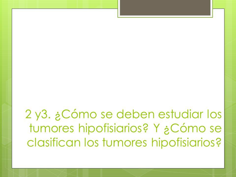 2 y3. ¿Cómo se deben estudiar los tumores hipofisiarios? Y ¿Cómo se clasifican los tumores hipofisiarios?