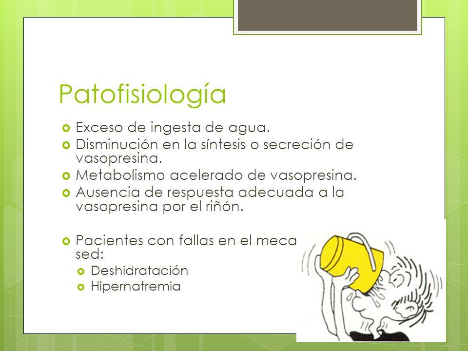 Patofisiología Exceso de ingesta de agua. Disminución en la síntesis o secreción de vasopresina. Metabolismo acelerado de vasopresina. Ausencia de res