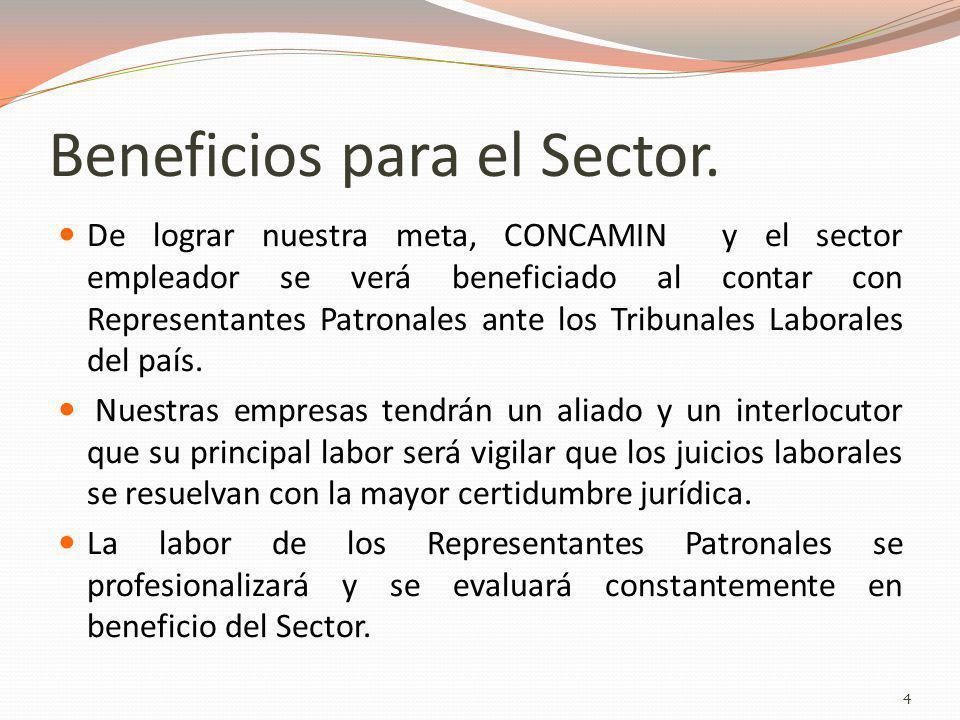 Beneficios para el Sector.