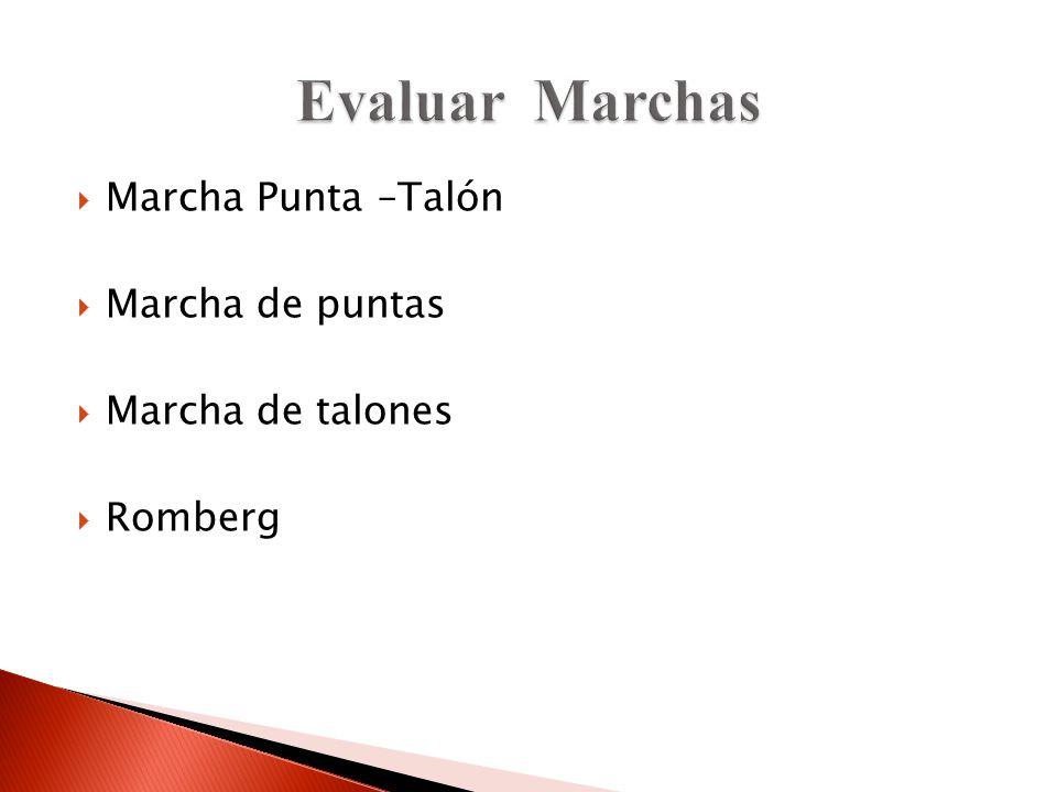 Marcha Punta –Talón Marcha de puntas Marcha de talones Romberg