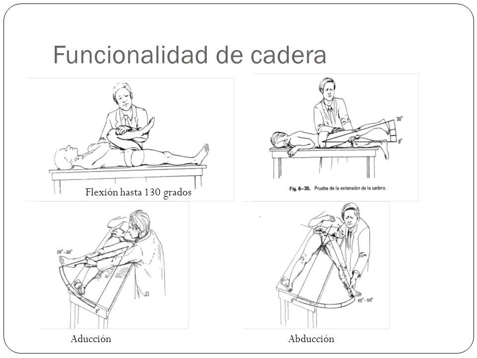 Funcionalidad de cadera Flexión hasta 130 grados Aducción Abducción