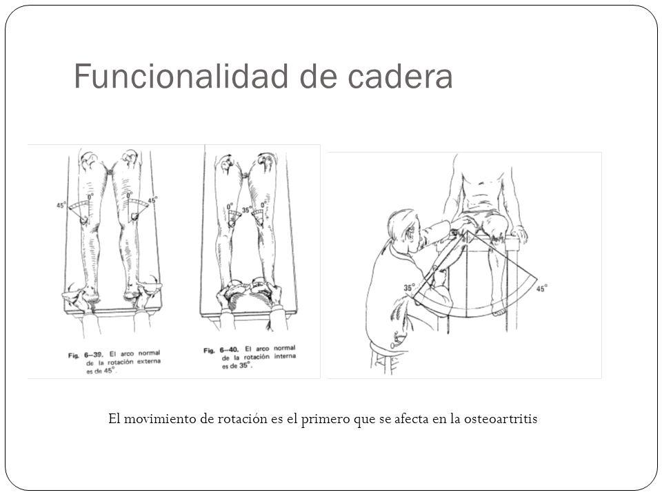 Funcionalidad de cadera El movimiento de rotación es el primero que se afecta en la osteoartritis
