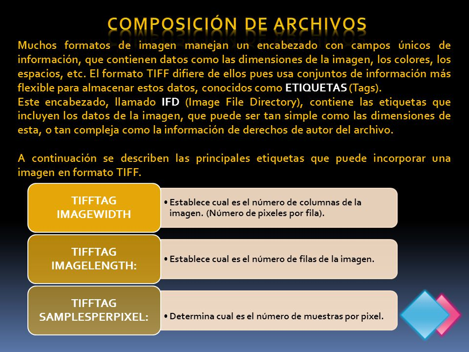 Muchos formatos de imagen manejan un encabezado con campos únicos de información, que contienen datos como las dimensiones de la imagen, los colores, los espacios, etc.