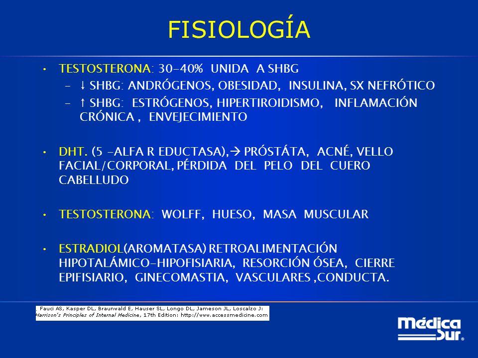 FISIOLOGÍA TESTOSTERONA: 30-40% UNIDA A SHBG – SHBG: ANDRÓGENOS, OBESIDAD, INSULINA, SX NEFRÓTICO – SHBG: ESTRÓGENOS, HIPERTIROIDISMO, INFLAMACIÓN CRÓNICA, ENVEJECIMIENTO DHT.
