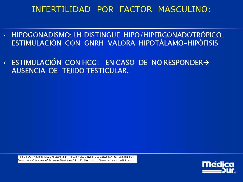 INFERTILIDAD POR FACTOR MASCULINO: HIPOGONADISMO: LH DISTINGUE HIPO/HIPERGONADOTRÓPICO.