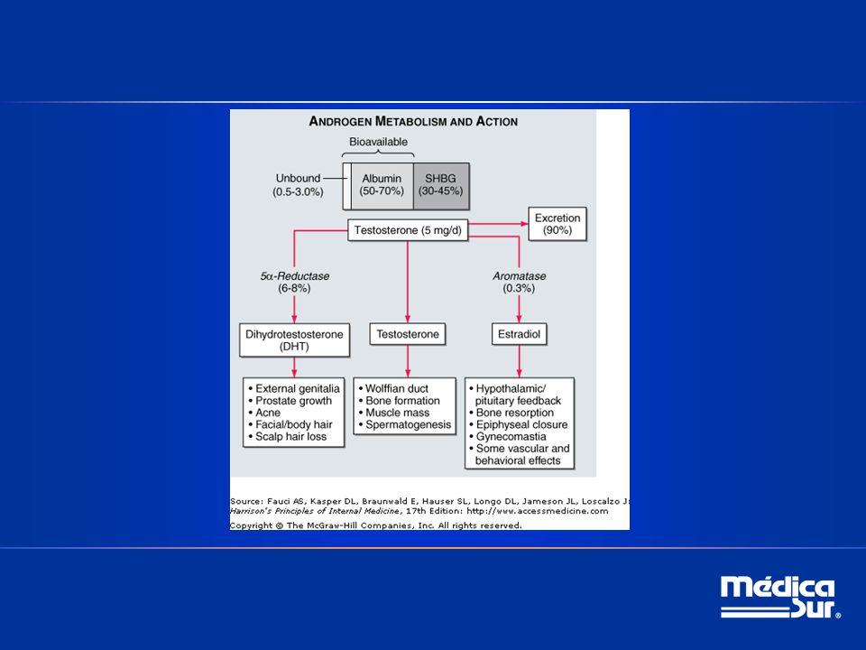 5.-Prueba de laboratorio útil para distinguir entre el hipogonadismo hipo e hipergonadotrópico en varones; a)FSH b)LH c)Inhibina B d)GnRH