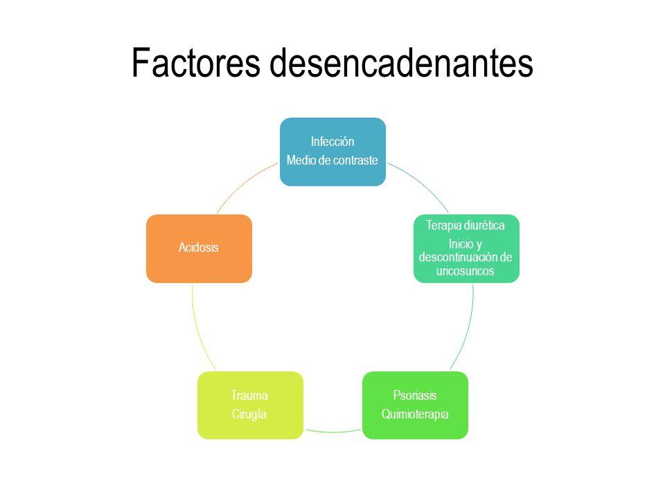 Factores desencadenantes Infección Medio de contraste Terapia diurética Inicio y descontinuación de uricosuricos Psoriasis Quimioterapia Trauma Cirugí