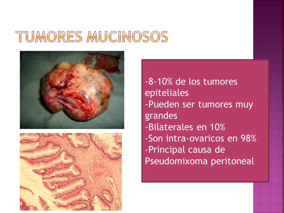 -8-10% de los tumores epiteliales -Pueden ser tumores muy grandes -Bilaterales en 10% -Son intra-ovaricos en 98% -Principal causa de Pseudomixoma peritoneal