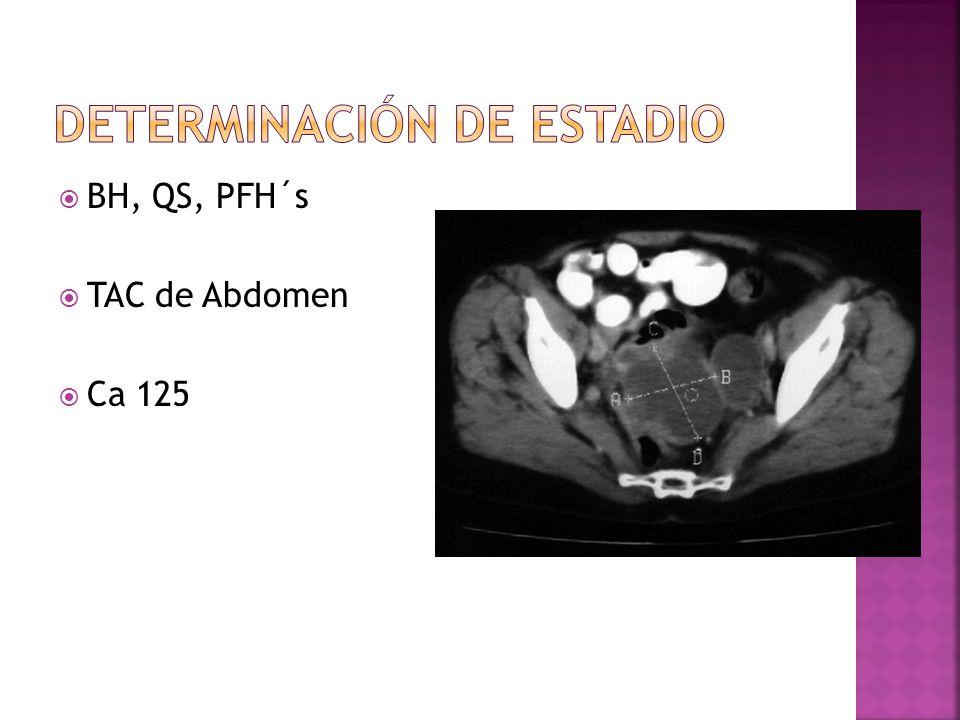 BH, QS, PFH´s TAC de Abdomen Ca 125