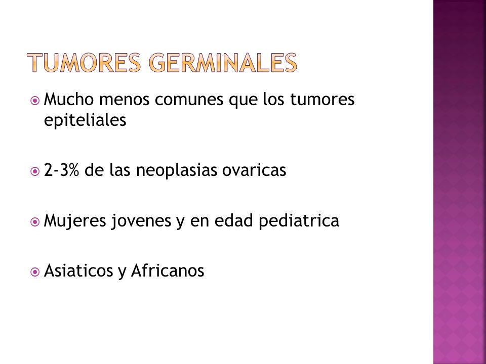 Mucho menos comunes que los tumores epiteliales 2-3% de las neoplasias ovaricas Mujeres jovenes y en edad pediatrica Asiaticos y Africanos