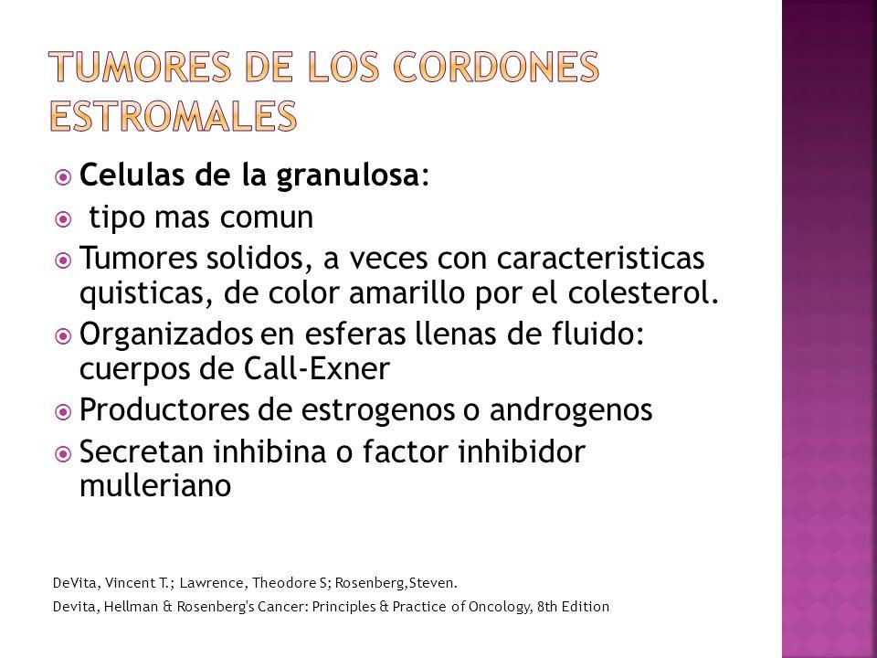 Celulas de la granulosa: tipo mas comun Tumores solidos, a veces con caracteristicas quisticas, de color amarillo por el colesterol.