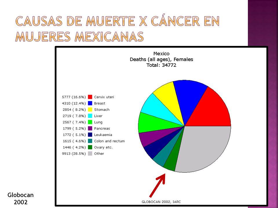 5% de los cancer de ovario Pacientes en estadio I con excelente pronostico Riesgo de recaida tardia.