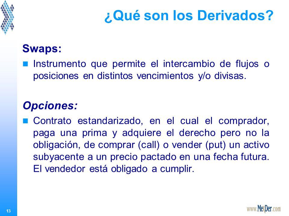 13 ¿Qué son los Derivados.