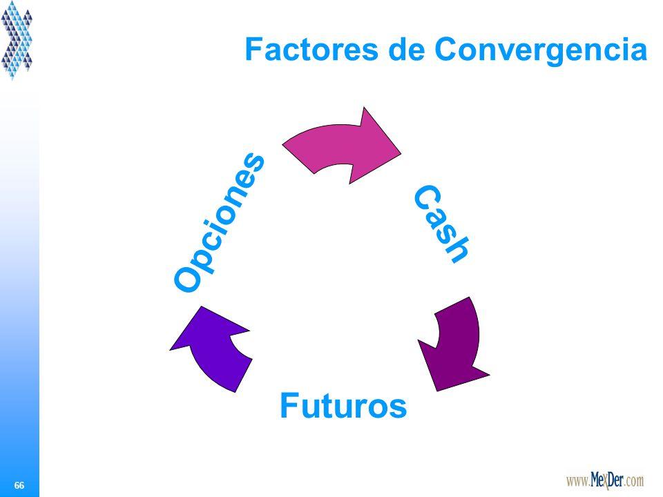 66 Factores de Convergencia Cash Futuros Opciones