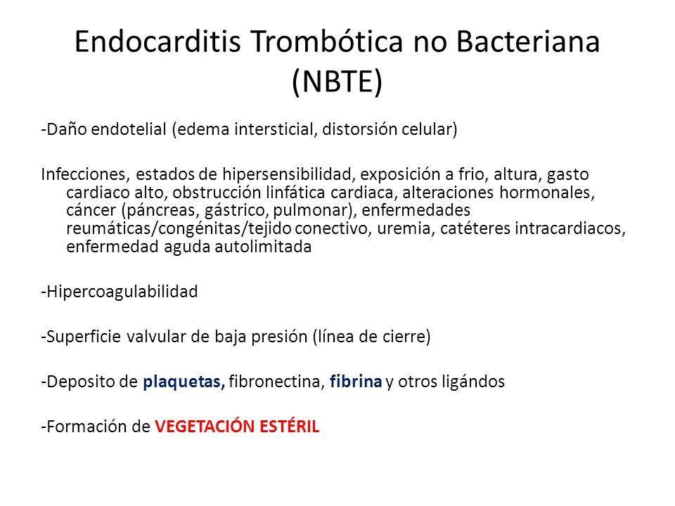 Endocarditis Trombótica no Bacteriana (NBTE) -Daño endotelial (edema intersticial, distorsión celular) Infecciones, estados de hipersensibilidad, expo