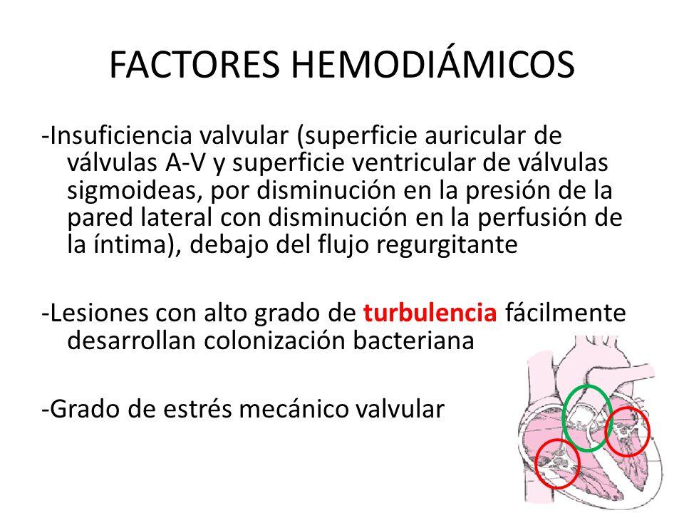 FACTORES HEMODIÁMICOS -Insuficiencia valvular (superficie auricular de válvulas A-V y superficie ventricular de válvulas sigmoideas, por disminución e