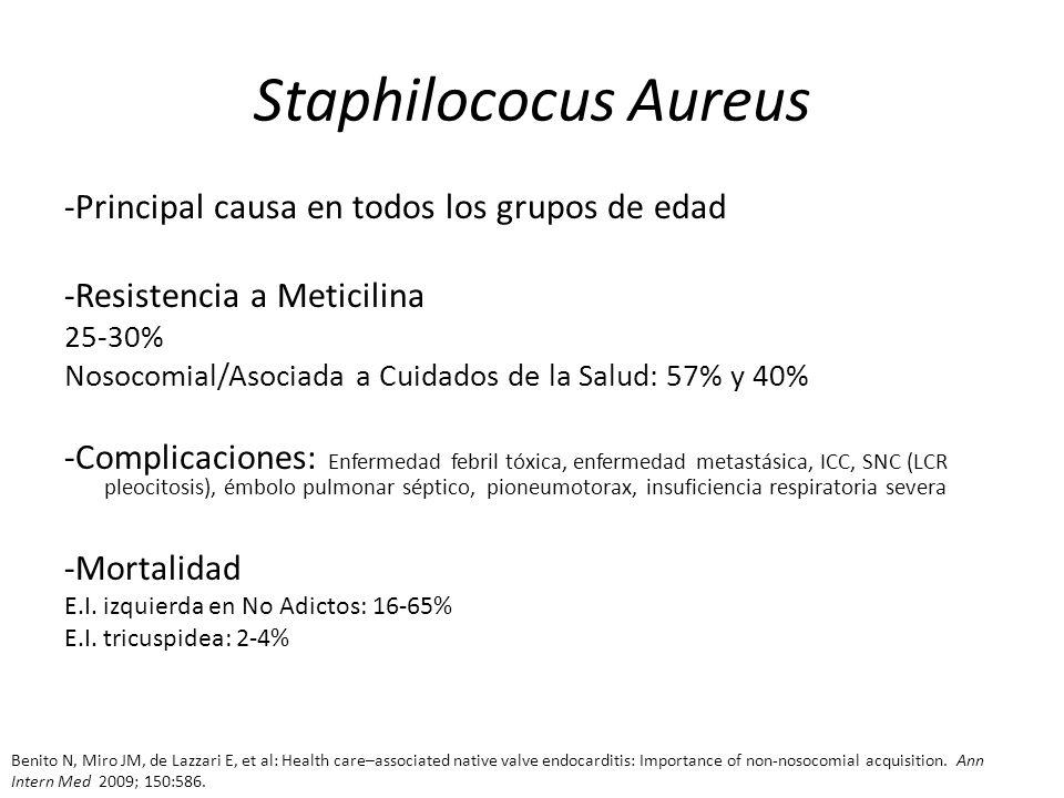 Staphilococus Aureus -Principal causa en todos los grupos de edad -Resistencia a Meticilina 25-30% Nosocomial/Asociada a Cuidados de la Salud: 57% y 4