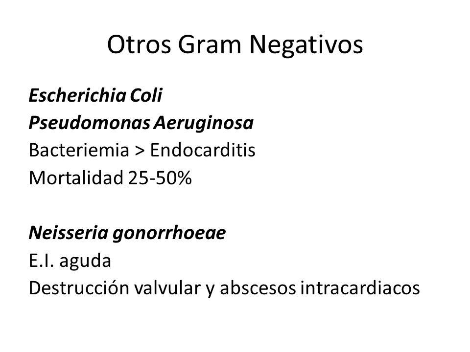 Otros Gram Negativos Escherichia Coli Pseudomonas Aeruginosa Bacteriemia > Endocarditis Mortalidad 25-50% Neisseria gonorrhoeae E.I. aguda Destrucción