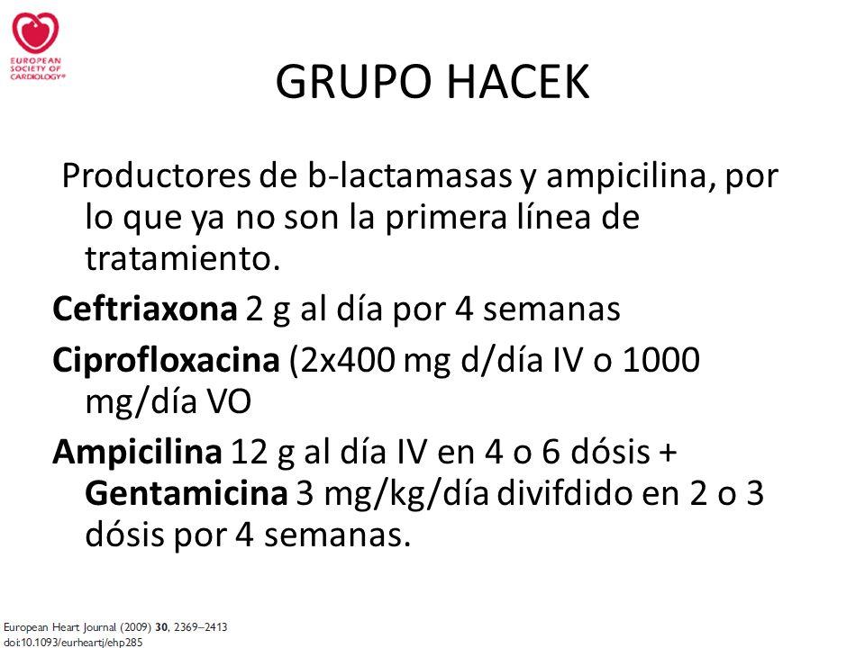 Productores de b-lactamasas y ampicilina, por lo que ya no son la primera línea de tratamiento. Ceftriaxona 2 g al día por 4 semanas Ciprofloxacina (2