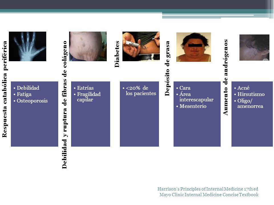 Respuesta catabólica periférica Debilidad Fatiga Osteoporosis Debilidad y ruptura de fibras de colágeno Estrías Fragilidad capilar Diabetes <20% de lo