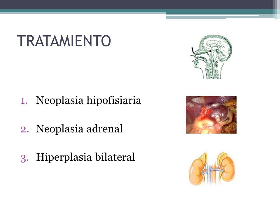 TRATAMIENTO 1.Neoplasia hipofisiaria 2.Neoplasia adrenal 3.Hiperplasia bilateral