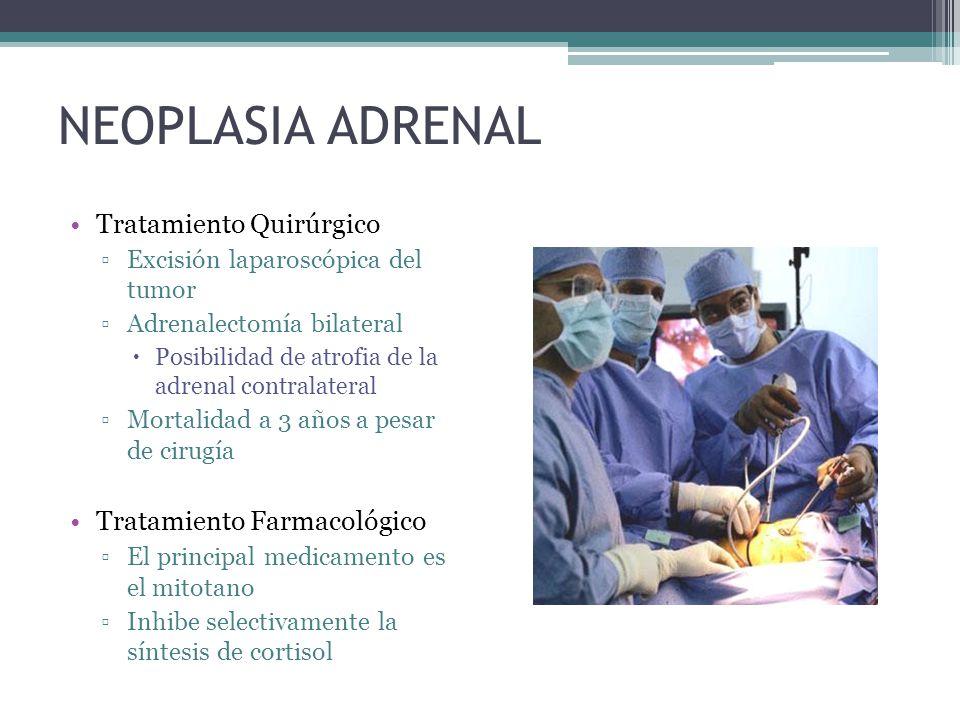 NEOPLASIA ADRENAL Tratamiento Quirúrgico Excisión laparoscópica del tumor Adrenalectomía bilateral Posibilidad de atrofia de la adrenal contralateral