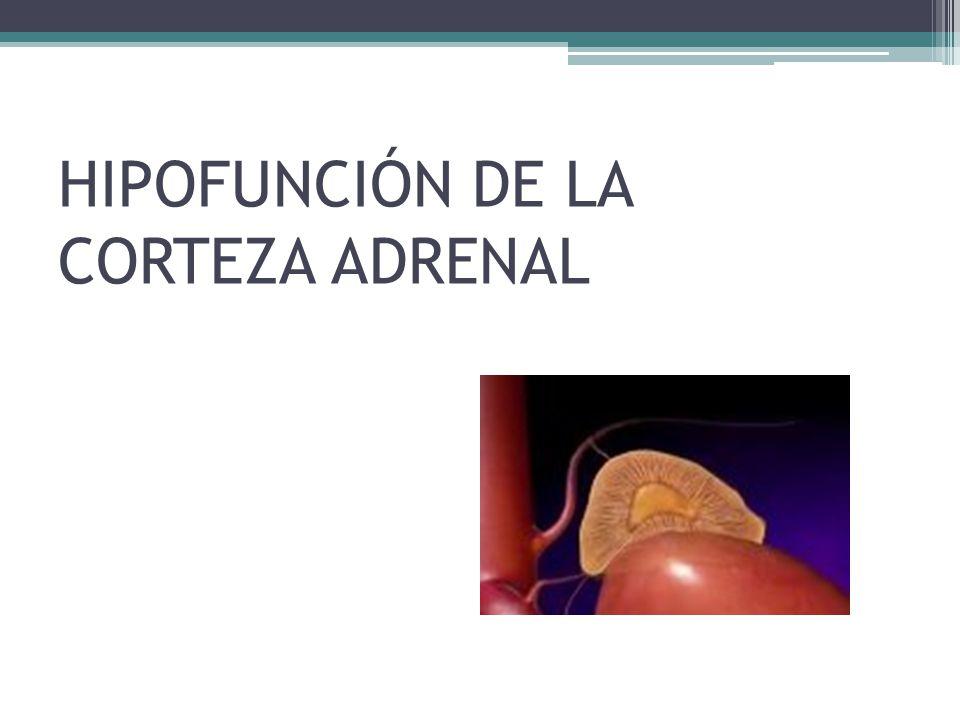 HIPOFUNCIÓN DE LA CORTEZA ADRENAL