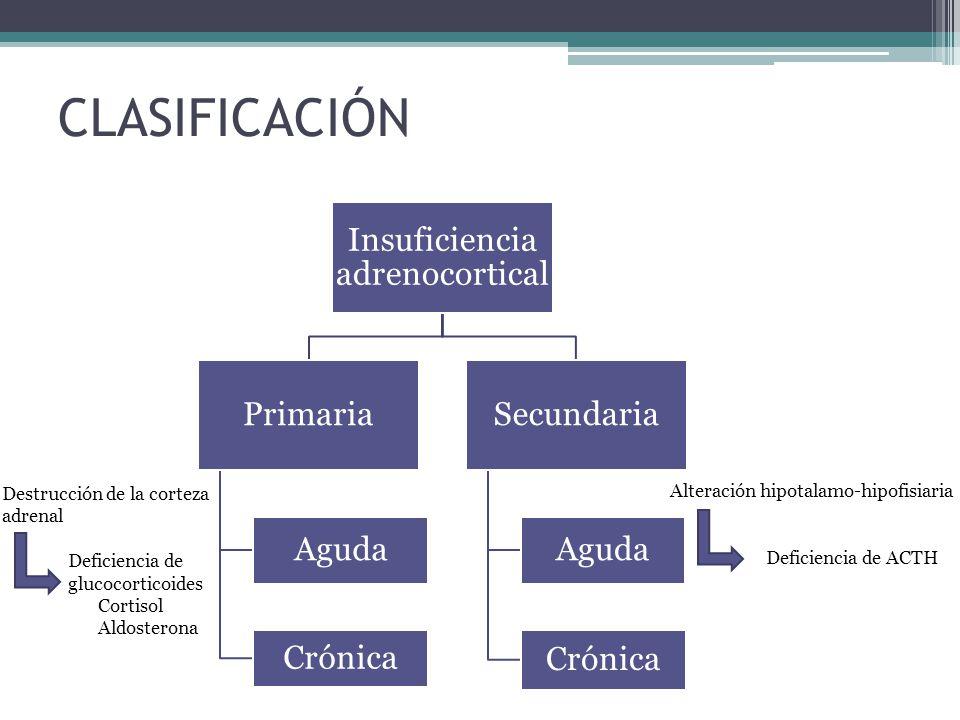 CLASIFICACIÓN Insuficiencia adrenocortical Primaria Aguda Crónica Secundaria Aguda Crónica Destrucción de la corteza adrenal Deficiencia de glucocorti
