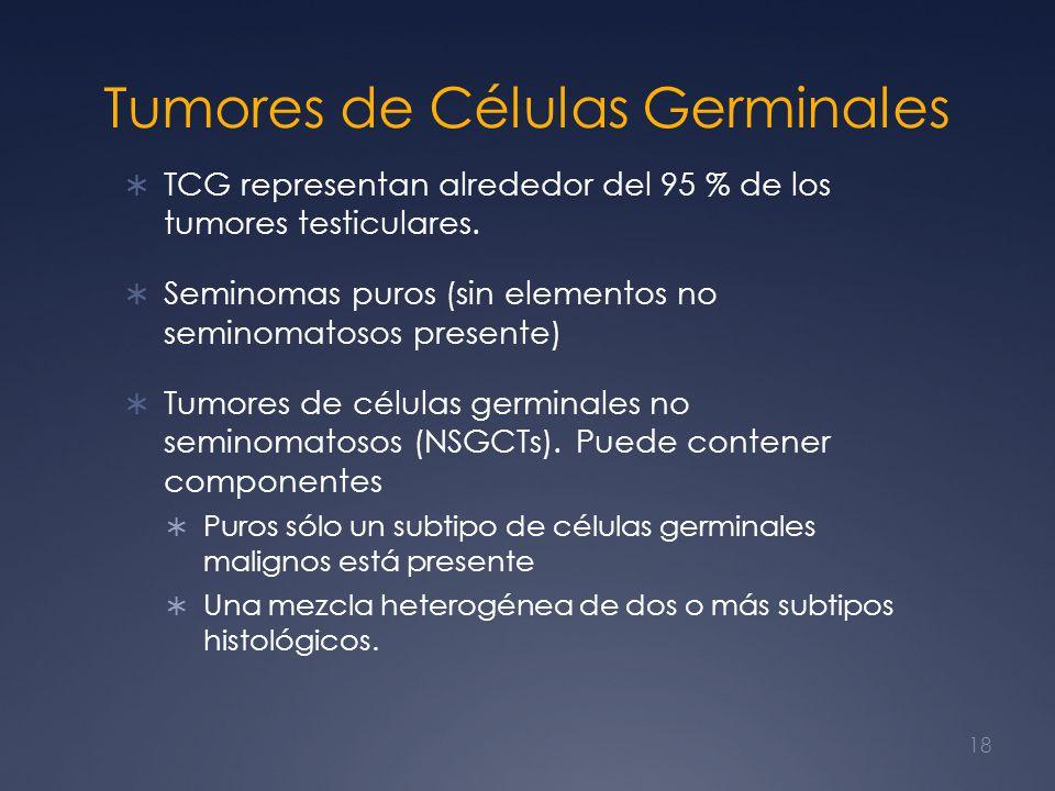 Tumores de Células Germinales TCG representan alrededor del 95 % de los tumores testiculares. Seminomas puros (sin elementos no seminomatosos presente