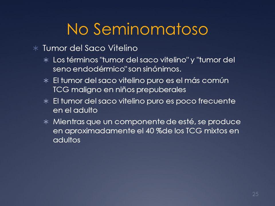No Seminomatoso Tumor del Saco Vitelino Los términos