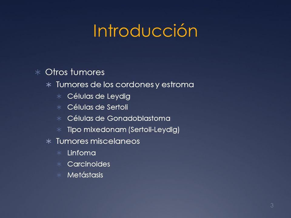 Introducción Otros tumores Tumores de los cordones y estroma Células de Leydig Células de Sertoli Células de Gonadoblastoma Tipo mixedonam (Sertoli-Le