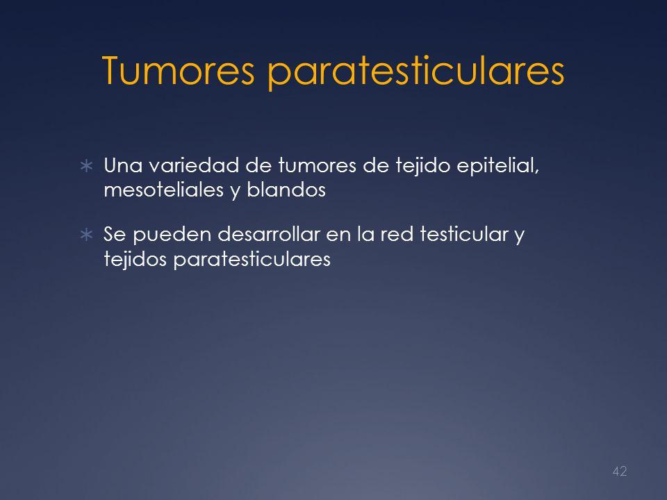 Tumores paratesticulares Una variedad de tumores de tejido epitelial, mesoteliales y blandos Se pueden desarrollar en la red testicular y tejidos para