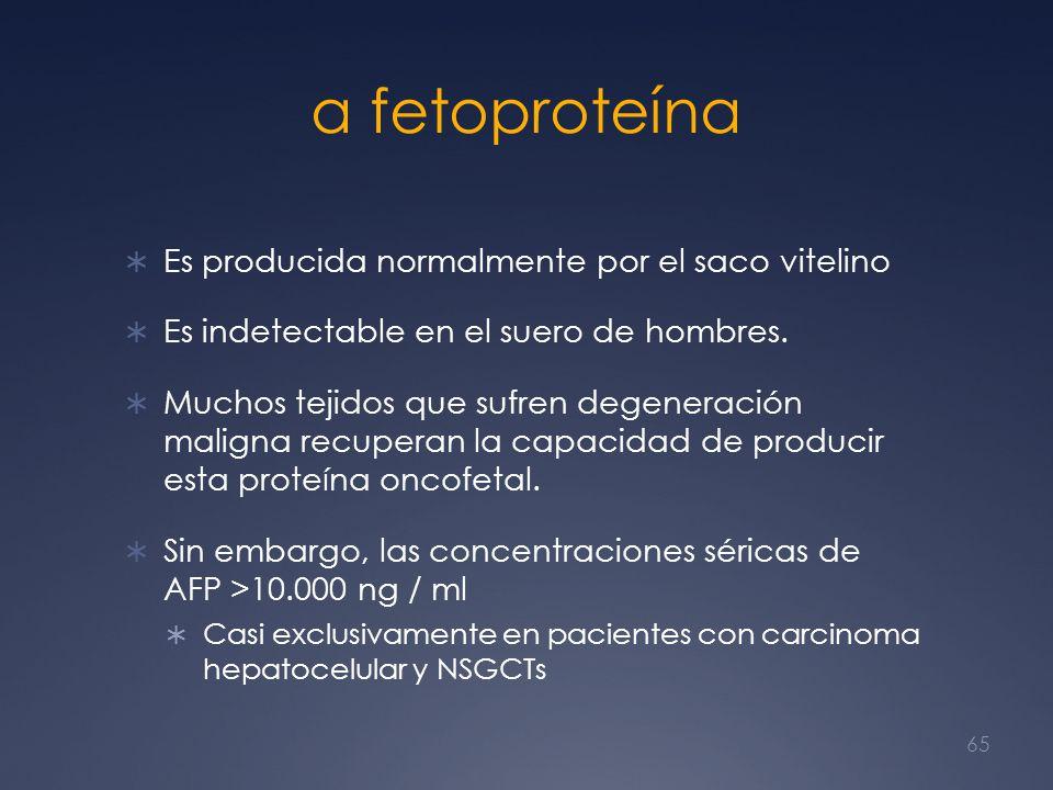 α fetoproteína Es producida normalmente por el saco vitelino Es indetectable en el suero de hombres. Muchos tejidos que sufren degeneración maligna re