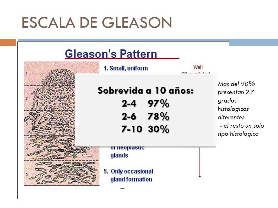 ESCALA DE GLEASON Mas del 90% presentan 2.7 grados histologicos diferentes - el resto un solo tipo histologico Sobrevida a 10 años: 2-4 97% 2-6 78% 7-10 30% Sobrevida a 10 años: 2-4 97% 2-6 78% 7-10 30%